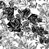Bezszwowy czarny i biały tło z różami Fotografia Royalty Free