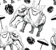 bezszwowy czarny i biały wzór z słoniem, monstera Zdjęcia Royalty Free