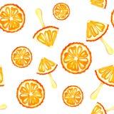 Bezszwowy deseniowy akwareli tło z wizerunkiem pomarańcze, mandarynka, lody Soczysta braja i ziarna dla druku ilustracji