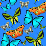 Bezszwowy deseniowy Ornithoptera paradisea, motyli skrzydła bi Fotografia Stock