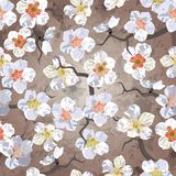 bezszwowy deseniowy Sakura Obraz Royalty Free