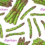 Bezszwowy dojrzały asparagus ilustracji