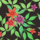 Bezszwowy druk z kwiatami i liśćmi na zmroku - szary tło royalty ilustracja