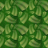 Bezszwowy drzewko palmowe liści wzór Fotografia Stock