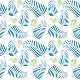 Bezszwowy drzewko palmowe liści wzór Obraz Stock