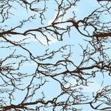 Bezszwowy drzewo wzór royalty ilustracja