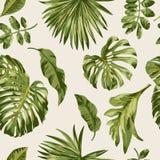 Bezszwowy egzota wzór z tropikalnymi liśćmi royalty ilustracja