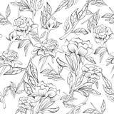 Bezszwowy elegancki peonia wzór ilustracja wektor