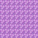 bezszwowy fuxia kwiatów wzór Zdjęcia Royalty Free