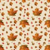Bezszwowy jesień wzór z liśćmi i pieczarkami royalty ilustracja
