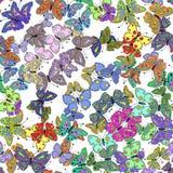 Bezszwowy kolorowy motyli wzór wektor Zdjęcie Royalty Free