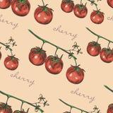 Bezszwowy koloru wzór z czereśniowymi pomidorami Zdjęcia Stock