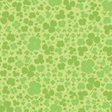 Bezszwowy koniczynowy tło. Zielony liścia quatrefoil. St. Patrick dzień. Fotografia Stock