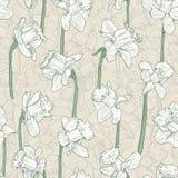 Bezszwowy kwiecisty biały narcyza wzór Kreskowa ilustracja dla tkaniny opakowania drukuje ślubu projekt w rocznika stylu Zdjęcia Stock