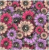 Bezszwowy kwiecisty deseniowy fiołek, kwiat, menchia, czerń kontury Zdjęcia Royalty Free