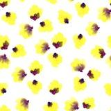 Bezszwowy kwiecisty wzór na białym tle Różowa wiśnia, śliwka, bonkreta, jabłczany okwitnięcie Wiosny i lata akwarela royalty ilustracja