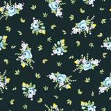 Bezszwowy kwiecisty wzór z dużej i błękita różą trochę Fotografia Royalty Free