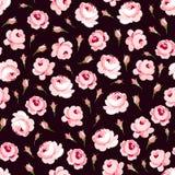 Bezszwowy kwiecisty wzór z dużymi i małymi różowymi różami Fotografia Royalty Free