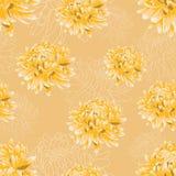 Bezszwowy kwiecisty wzór z jaskrawymi żółtymi chryzantemami Fotografia Royalty Free