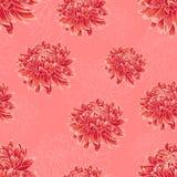 Bezszwowy kwiecisty wzór z jaskrawymi czerwonymi chryzantemami Obraz Stock