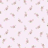 Bezszwowy kwiecisty wzór z małymi kwiatami różowi róże Zdjęcia Stock