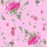 Bezszwowy kwiecisty wzór z różowymi peoniami, anemonami, eukaliptusem i menchia grochem, ilustracja wektor
