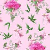 Bezszwowy kwiecisty wzór z różowymi peoniami, anemony, eukaliptus ilustracji