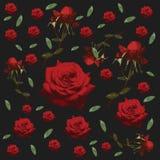 Bezszwowy kwiecisty wzór z różami, kwiat - Wektorowa ilustracja Obraz Stock