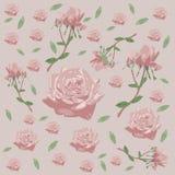 Bezszwowy kwiecisty wzór z różami, kwiat - Wektorowa ilustracja Zdjęcia Royalty Free