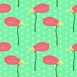 Bezszwowy kwiecisty wzór z różowymi Anthurium kwiatami Fotografia Royalty Free