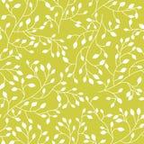 Bezszwowy kwiecisty wzór z rośliną Zdjęcie Royalty Free