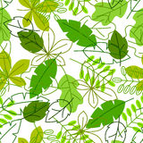 Bezszwowy kwiecisty wzór z stylizowanymi zielonymi liśćmi Wiosny lub lata ulistnienie ilustracji