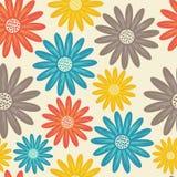 bezszwowy kwiecisty wzoru Kwitnie teksturę daisy Fotografia Royalty Free