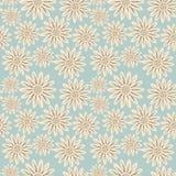 bezszwowy kwiecisty wzoru Kwitnie teksturę daisy Zdjęcie Royalty Free