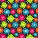 bezszwowy kwiecisty wzoru Kwitnie teksturę daisy Obrazy Stock