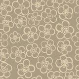 bezszwowy kwiecisty wzoru Kwitnie teksturę daisy Zdjęcia Stock