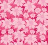 bezszwowy kwiecisty wzoru Na różowym tle kwiaty są szarotką, wodna leluja, lotos Dla pocztówki, zaproszenia, tkaniny royalty ilustracja