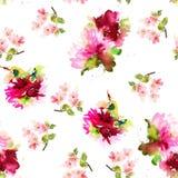 Bezszwowy lato wzór z akwarela kwiatami Fotografia Royalty Free
