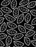bezszwowy liść kwiecisty wzór Zdjęcia Royalty Free
