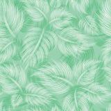 bezszwowy liść zielony wzór Obraz Stock