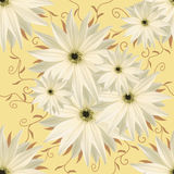 Bezszwowy nieskończony tło kwiecisty Biali kwiaty dla projekta i druku Tło naturalni kwiaty Fotografia Stock