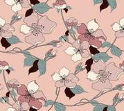 Bezszwowy okwitnięcie kwiatu tło Ilustracyjny kwiecisty wzór ilustracja wektor