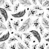 Bezszwowy oliwki i palmy gałąź wzoru ręka rysujący projekt Fotografia Stock