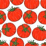 Bezszwowy pomidoru wzór Zdjęcia Stock