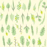 Bezszwowy prosty mieszkanie wzór z liściem Dachówkowy botaniczny kwiecisty tło Obraz Royalty Free