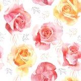 Bezszwowy róża wzór na białym tle Zdjęcia Royalty Free