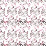 bezszwowy ręka patroszony wzór piękne kociaki Obrazy Stock