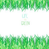 Bezszwowy szablon pocztówka z akwareli zieloną trawą na białym tle Zdjęcia Stock