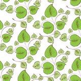 Bezszwowy tło gałązki z zielonymi liśćmi Zdjęcia Stock
