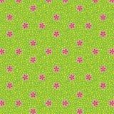 Bezszwowy tło jako kwiatonośna łąka Zdjęcia Royalty Free